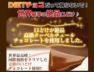 【送料無料】チアチョコリッチ お徳用 の商品画像