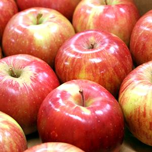 快福りんご